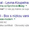 Screenshot Google reklam pro Wellmall