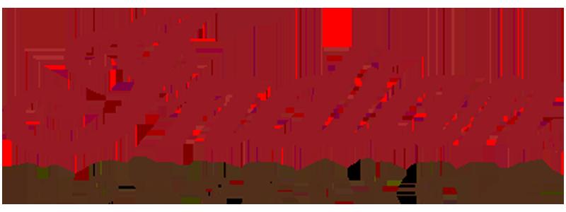 Indian-moto.ro - Produktový katalog
